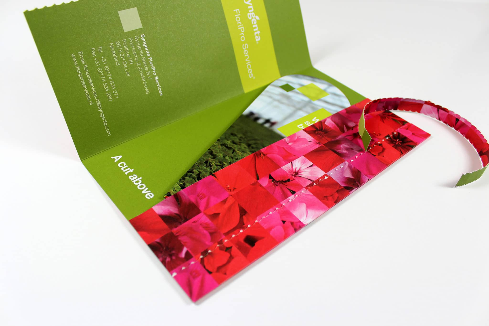 Printed die-cut tear-off Mailer for Syngenta